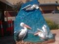 smartcolor_pelican_australia
